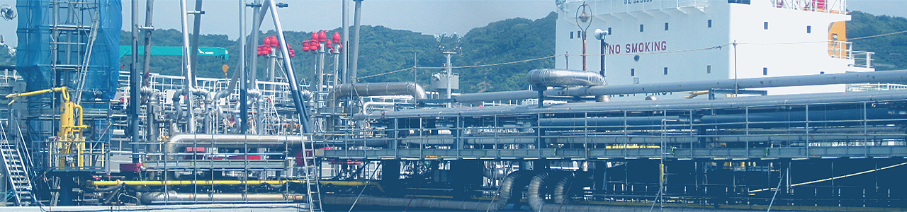 Petroleum Refinery and Petrochemical